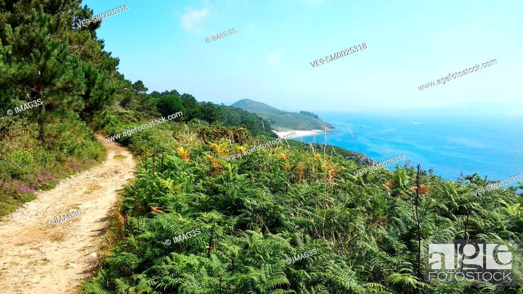 Imagen: Trail to Melide beach, Ons island, Islas Atlánticas National Park, Pontevedra province, Galicia, Spain.