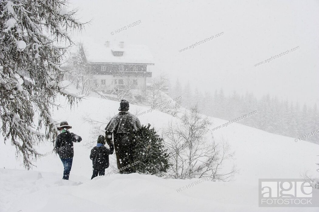Stock Photo: Austria, Altenmarkt-Zauchensee, father with two sons carrying Christmas tree in winter landscape.