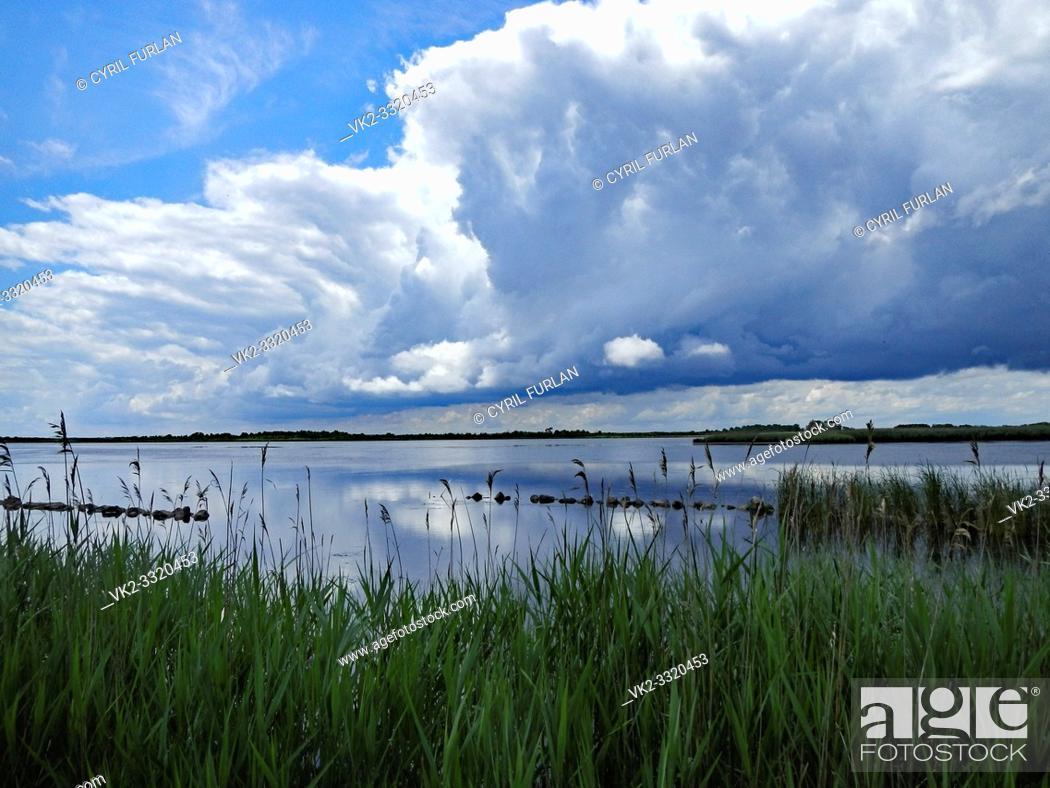 Stock Photo: Back Bay National Wildlife Refuge Virginia.