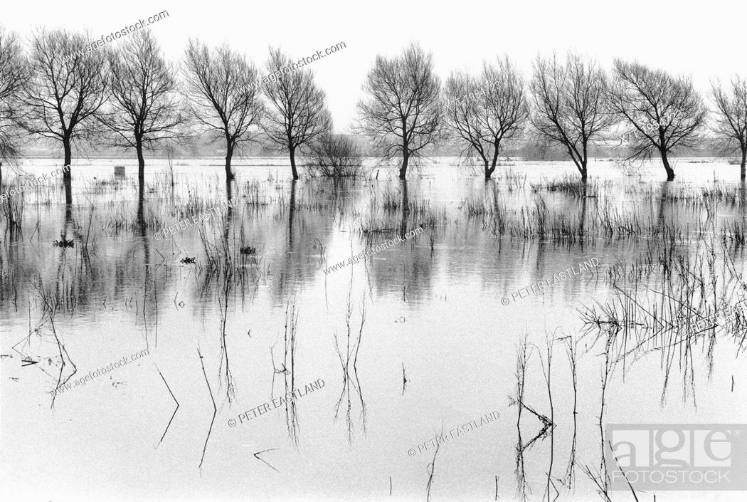 Imagen: The River Avon in flood at near Christchurch, Hampshire, England.