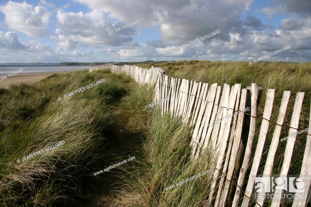 Stock Photo: Dunes and beach of Britain.