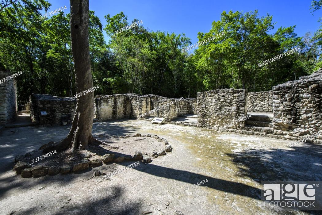 Stock Photo: Structure at Mayan city of Calakmul, Calakmul Biosphere Reserve, Campeche, Mexico.