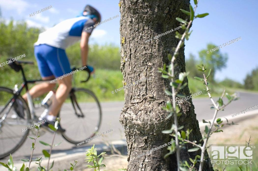 Stock Photo: Cyclist cycling on road with tree bark in the foreground.