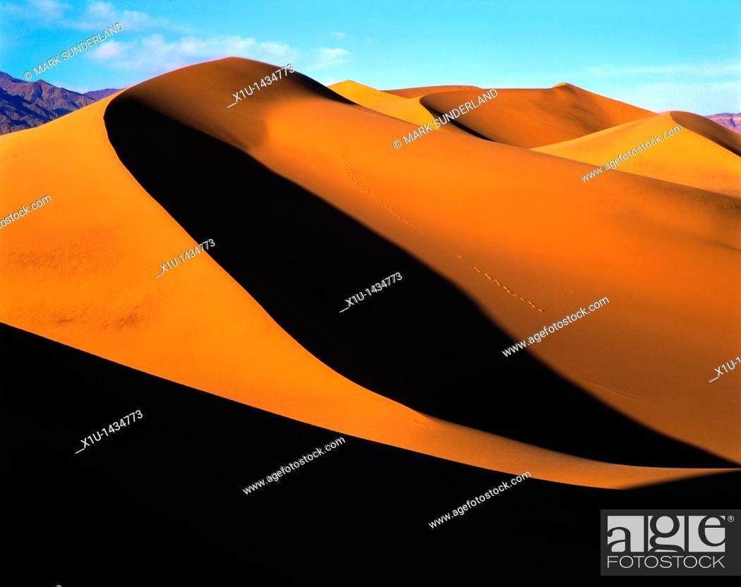 Stock Photo: Sand Dune VII.
