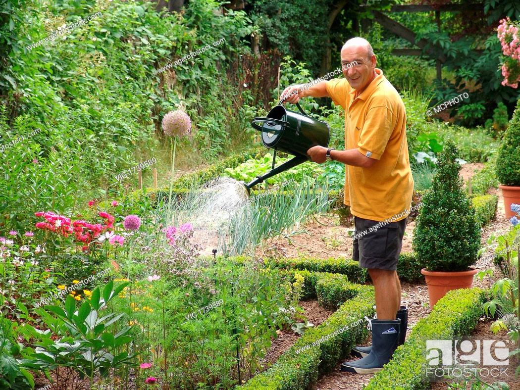 Stock Photo: gardening - 16/07/2004.
