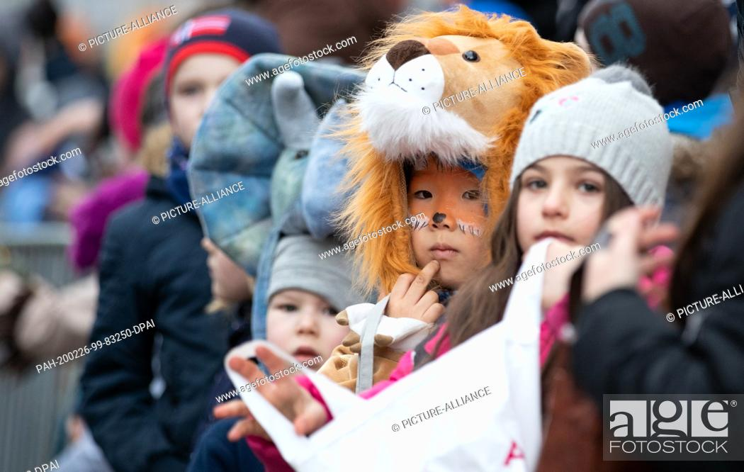 Stock Photo: 22 February 2020, Lower Saxony, Osnabrück: Carnivalists dressed as lions stand at the roadside waiting for camels at the traditional carnival parade.