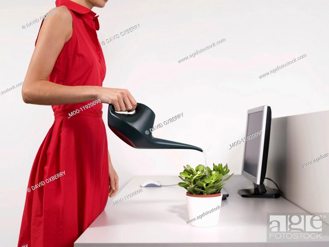 Stock Photo: Female office worker watering desk plant.