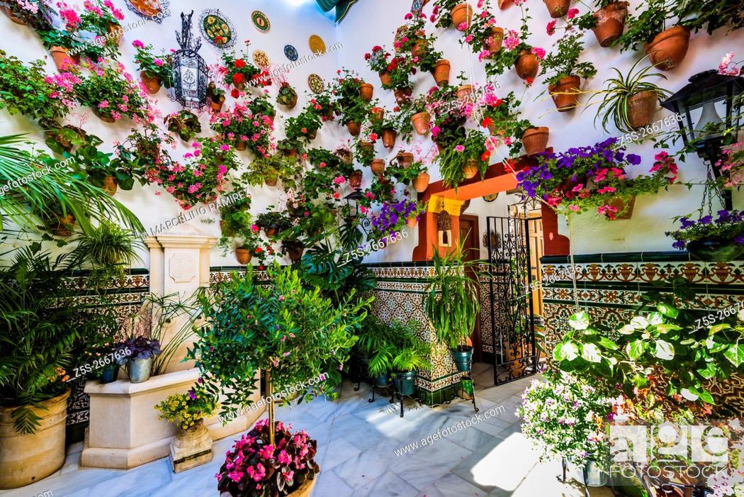 Courtyards Festival of Cordoba 2016 - La Fiesta de los Patios de ...