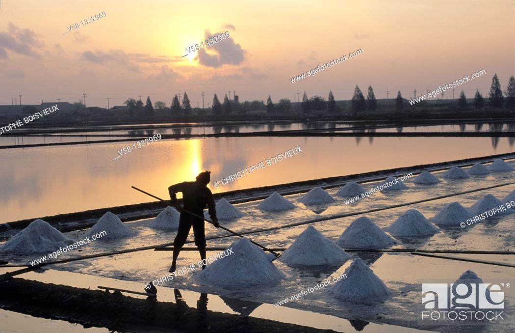 Stock Photo: Thailand, Samut Songkhram province, Salt flats, Salt harvest.