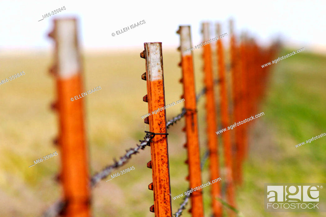 Stock Photo: Row of rusted fence posts quickly fading out of focus in the distance, outside Elk City in central Oklahoma, USA.