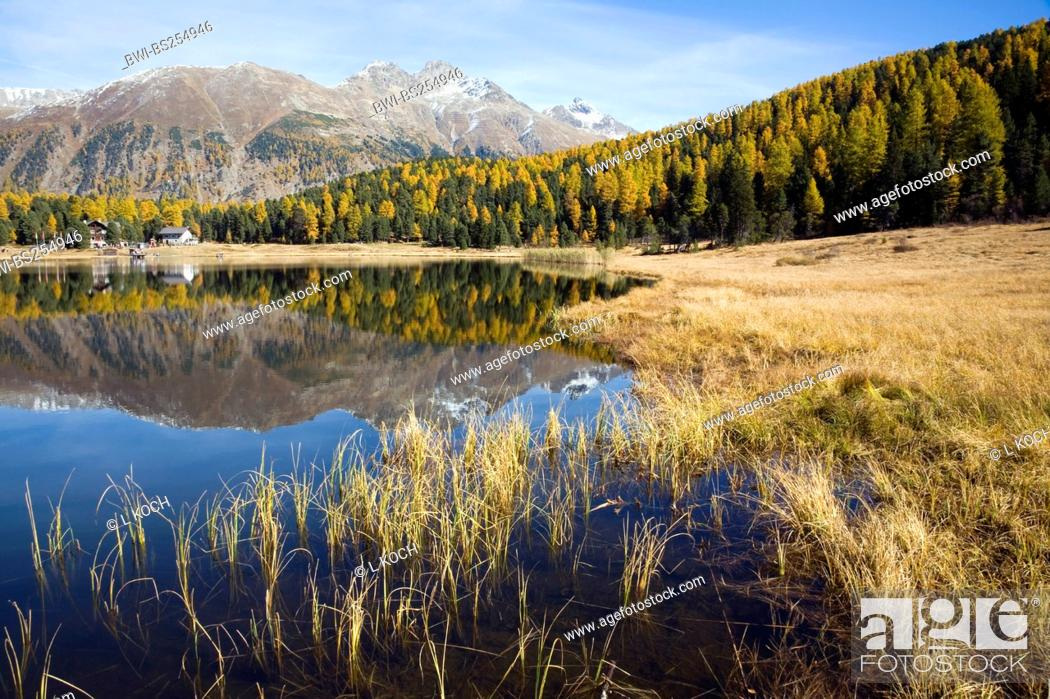 Stock Photo: Lake of Staz, Switzerland, Graubuenden, St. Moritz.