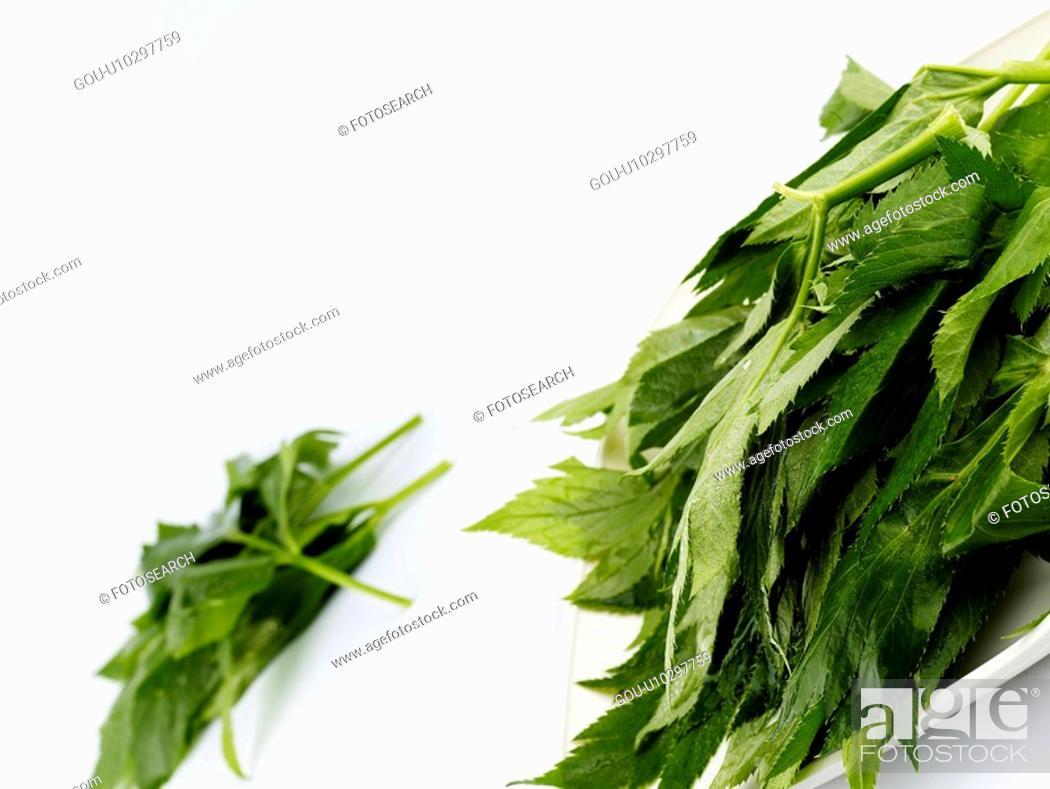 Stock Photo: food material, dish, cuisine, food, plate, ashitaba.