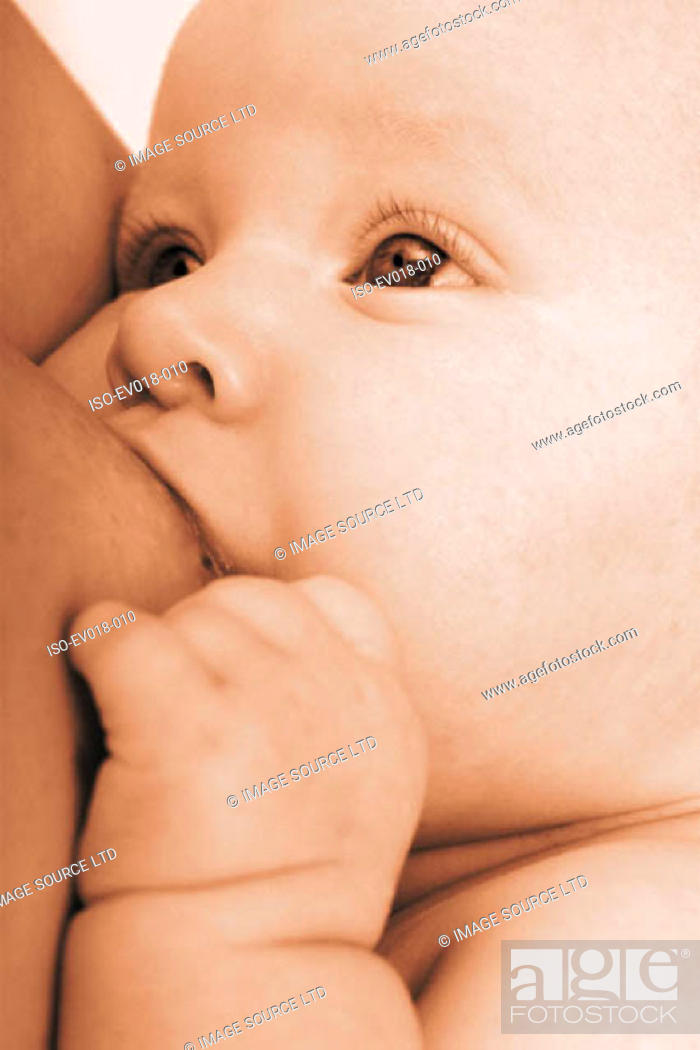 Stock Photo: Baby being breastfed.