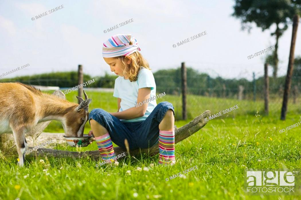 Stock Photo: A girl feeding a goat.