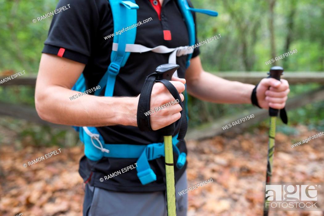Stock Photo: Hiker with walking sticks.