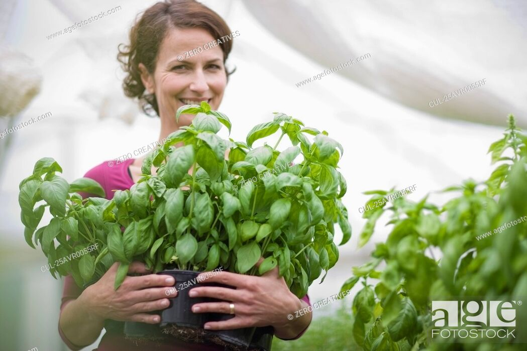 Stock Photo: Farming vegetables and fruits.