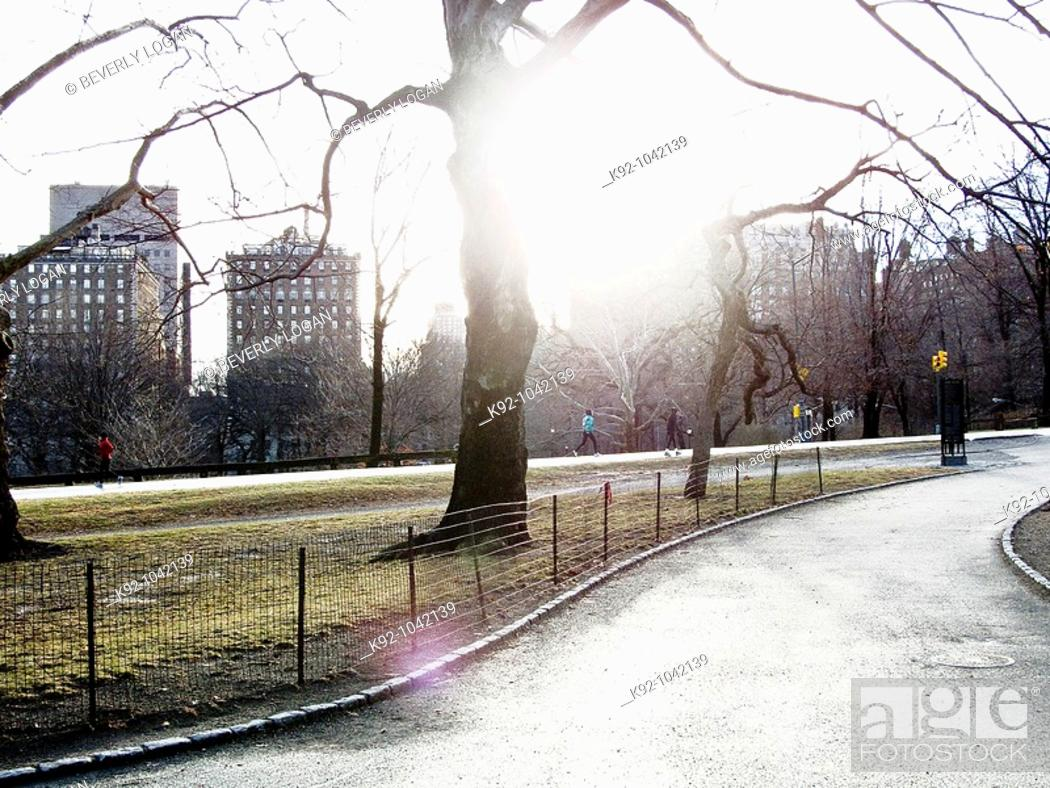 Stock Photo: Path in an urban park on a winter day.