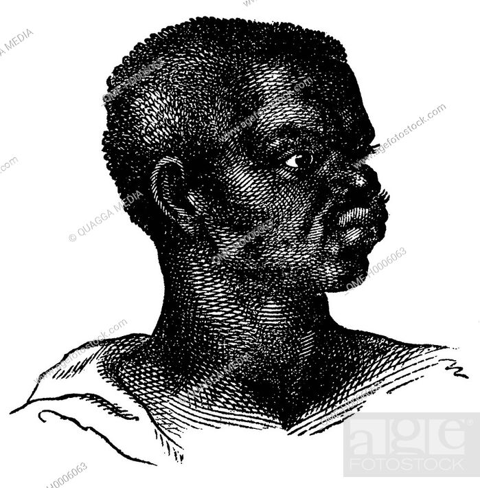 Imagen: Portrait of an African from the Guinea coast.