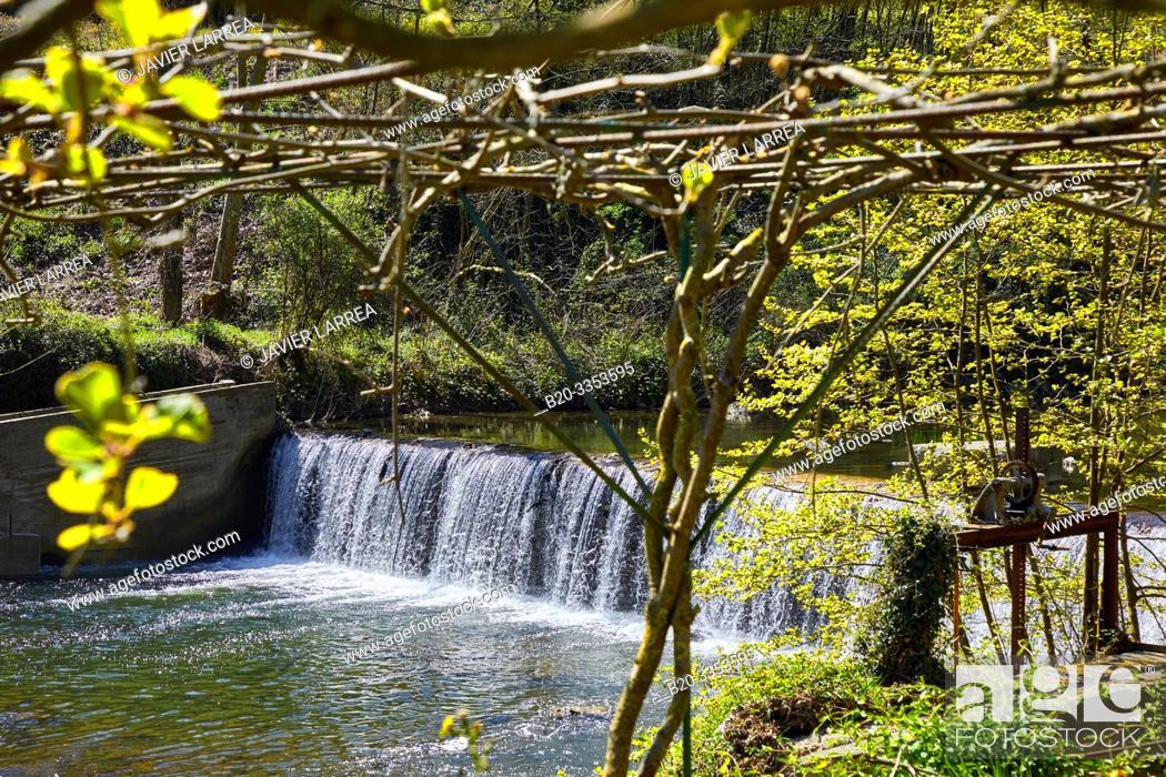 Stock Photo: Oria River, San Miguel auzoa, Legorreta, Gipuzkoa, Basque Country, Spain.