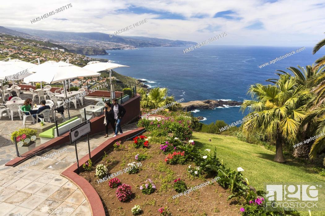Spain Canary Islands Tenerife Island El Sauzal Terrace