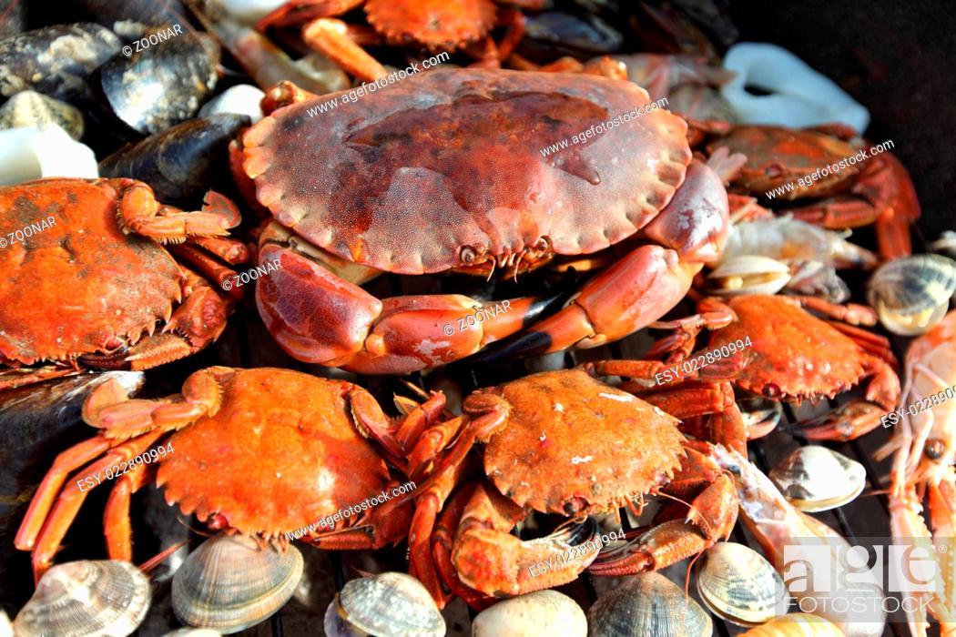 Photo de stock: crabs shrimps on charcoal grill.