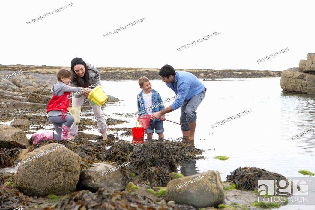 Stock Photo: Young family at beach collecting shells.