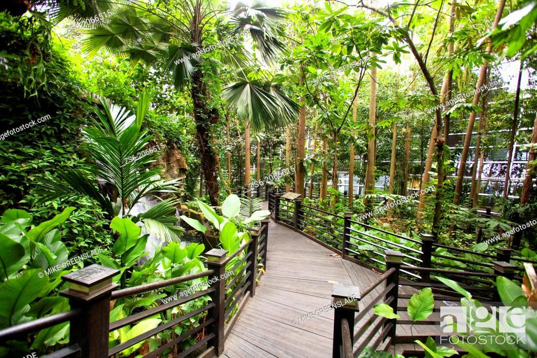 Imagen: Rainforest walk, Sepang Airport, Kuala Lumpur, Malaysia.
