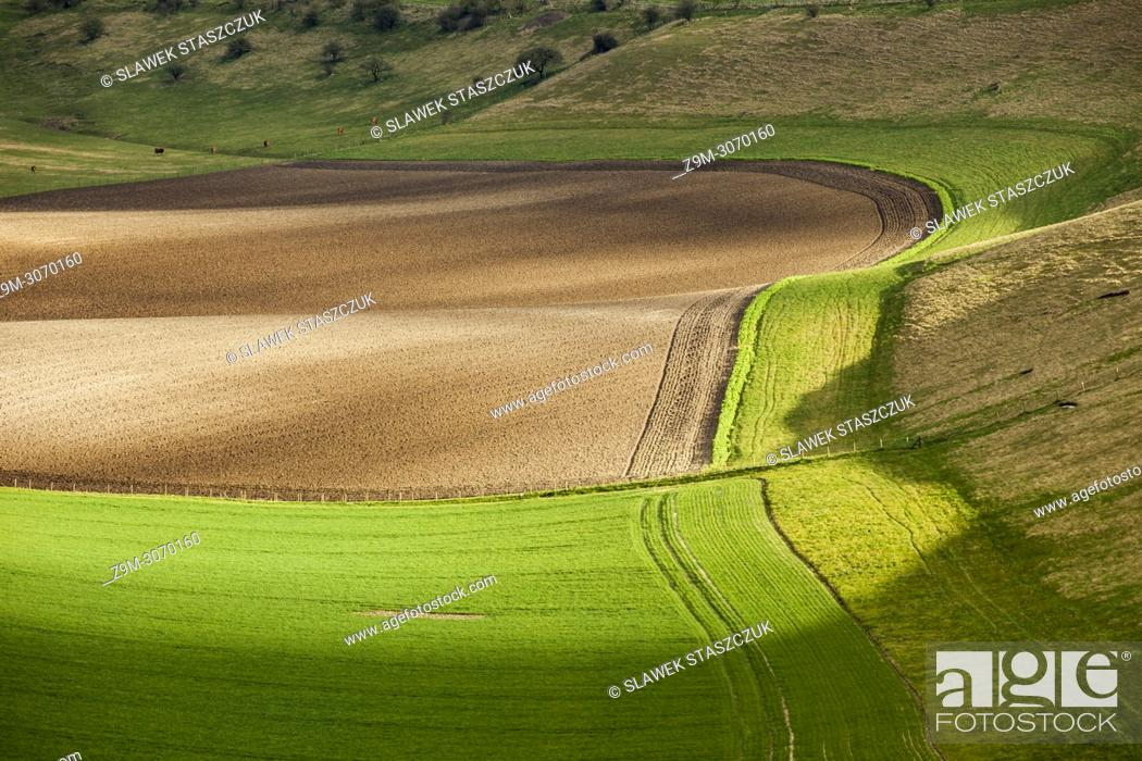 Stock Photo: Early spring in South Downs National Park, West Sussex, England.