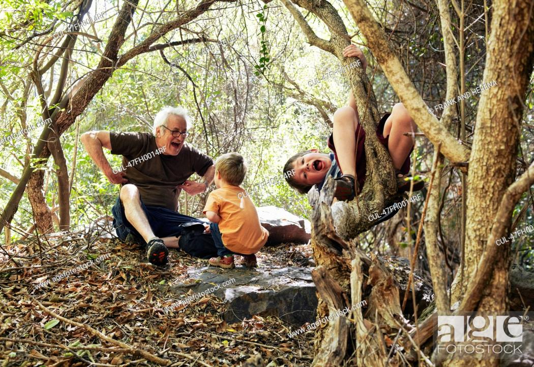 Father and his sons playing in the forest, Stock Photo, Picture And