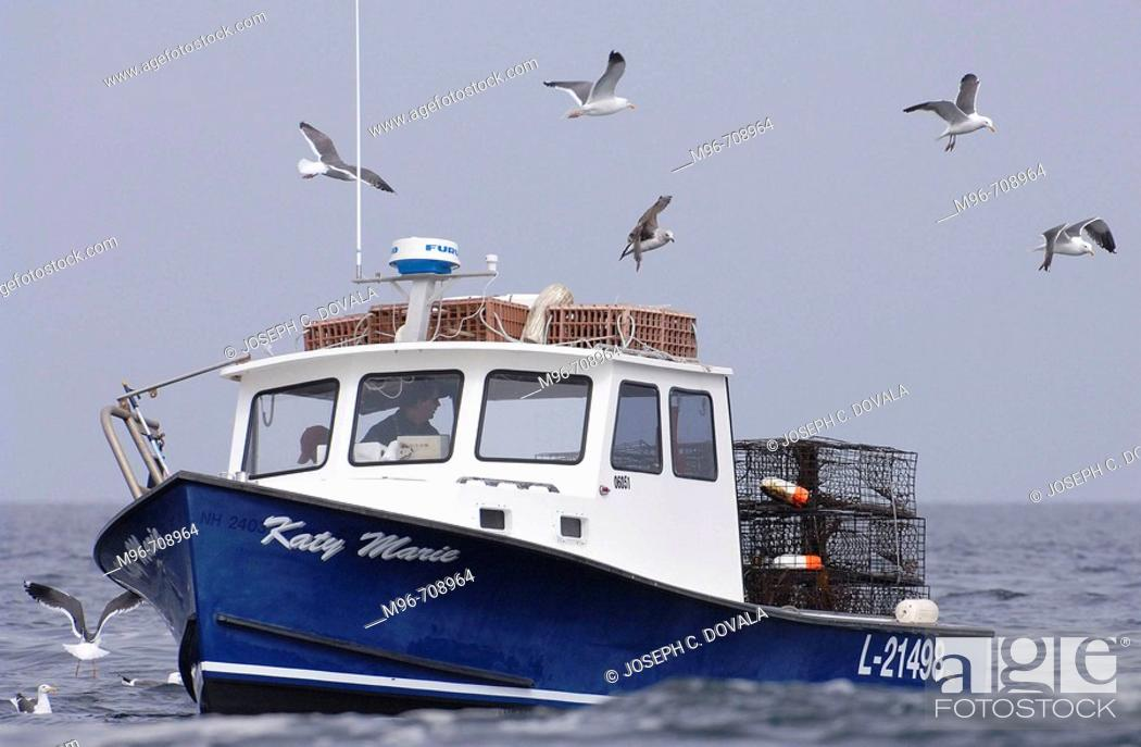 West Coast lobster boat and seagulls  Channel Islands