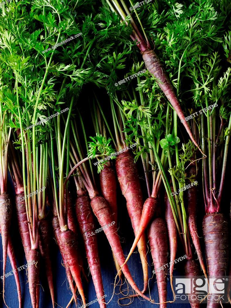 Stock Photo: Still life of purple carrots, overhead view.