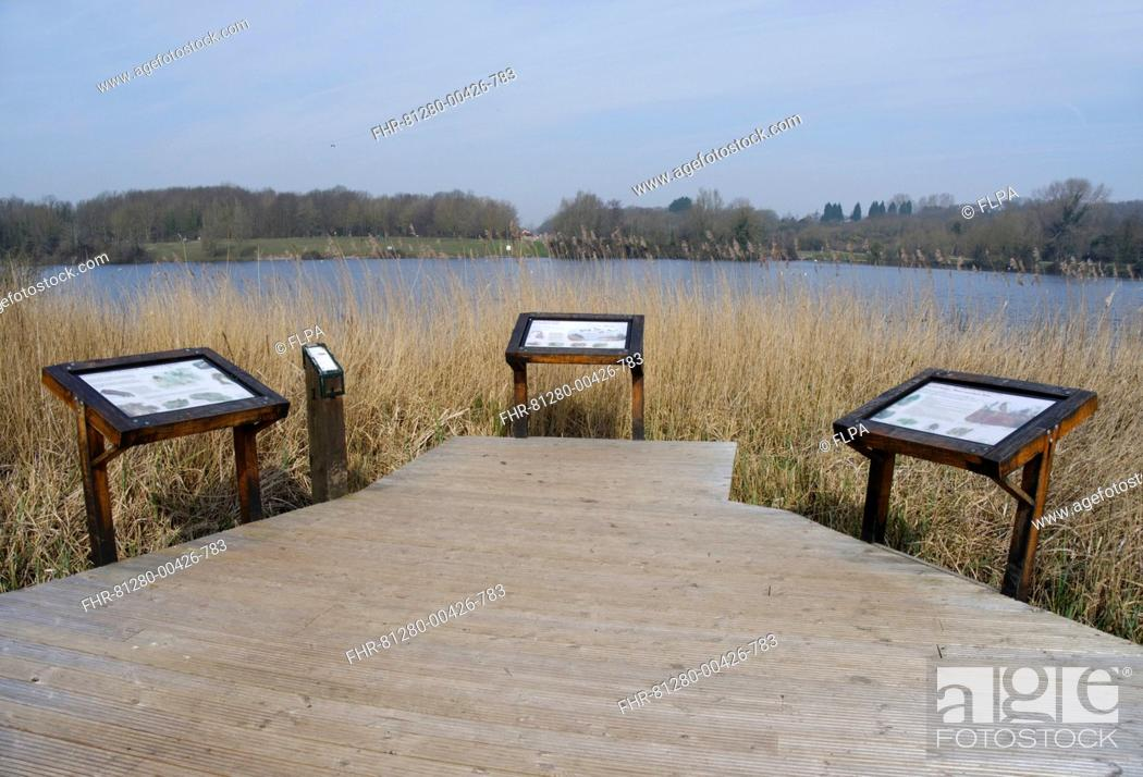 Stock Photo: Boardwalk and information boards overlooking lake in flooded former limestone quarry, Cosmeston Lake Country Park, Vale of Glamorgan, Glamorgan, Wales, march.