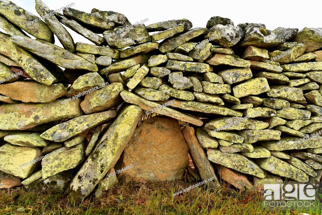 Photo de stock: Dry stone wall detaill. Sayago, Zamora province, Castilla y Leon, Spain.