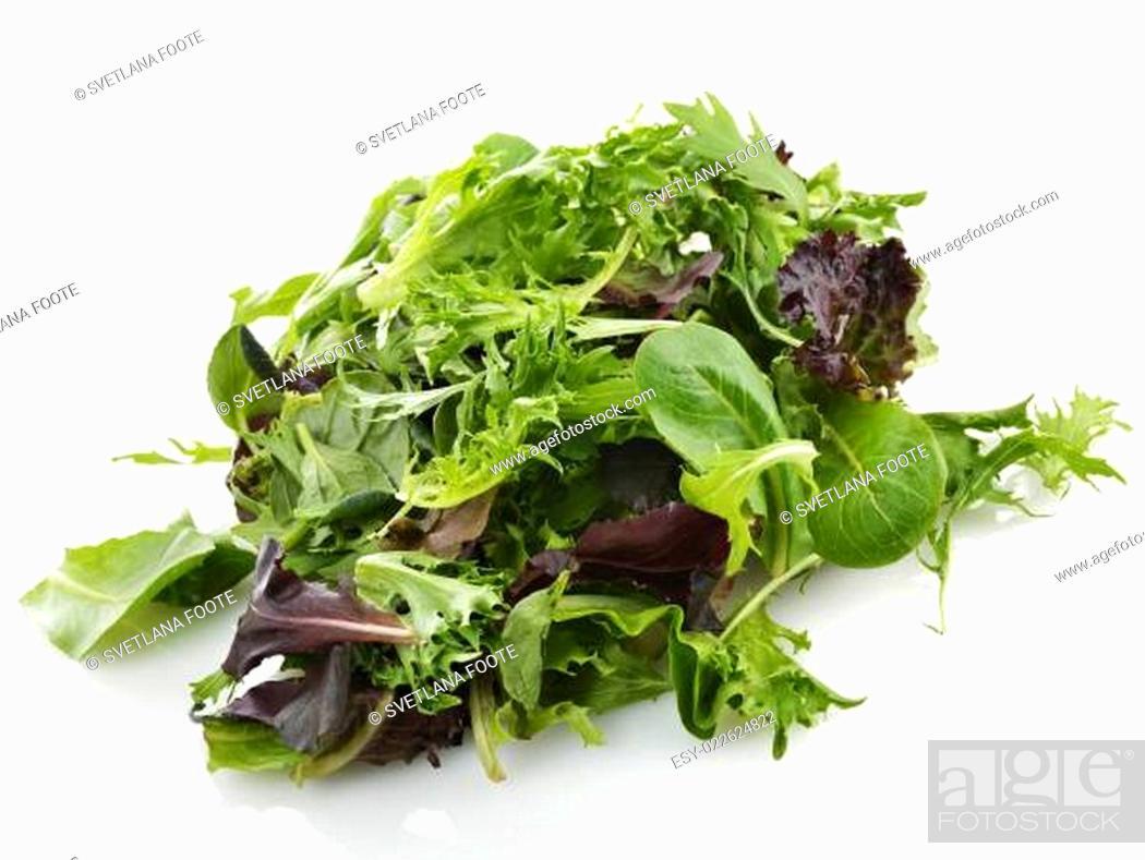 Stock Photo: Salad Leaves.