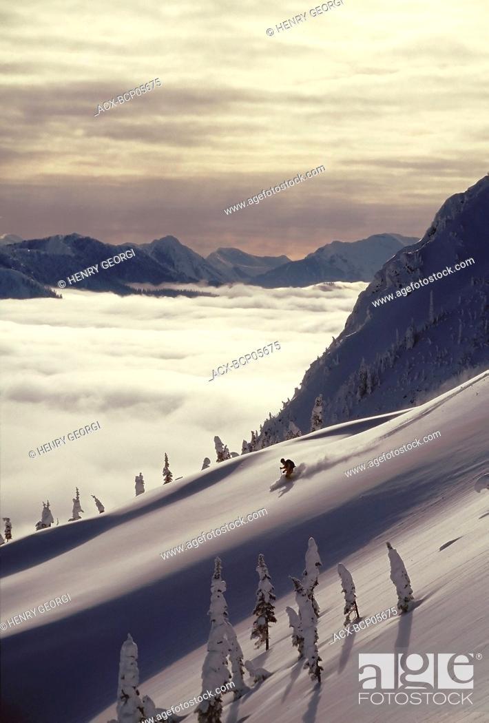 Stock Photo: Skier skiing fresh powder in backcountry near Fernie, East Kootenays, British Columbia, Canada.