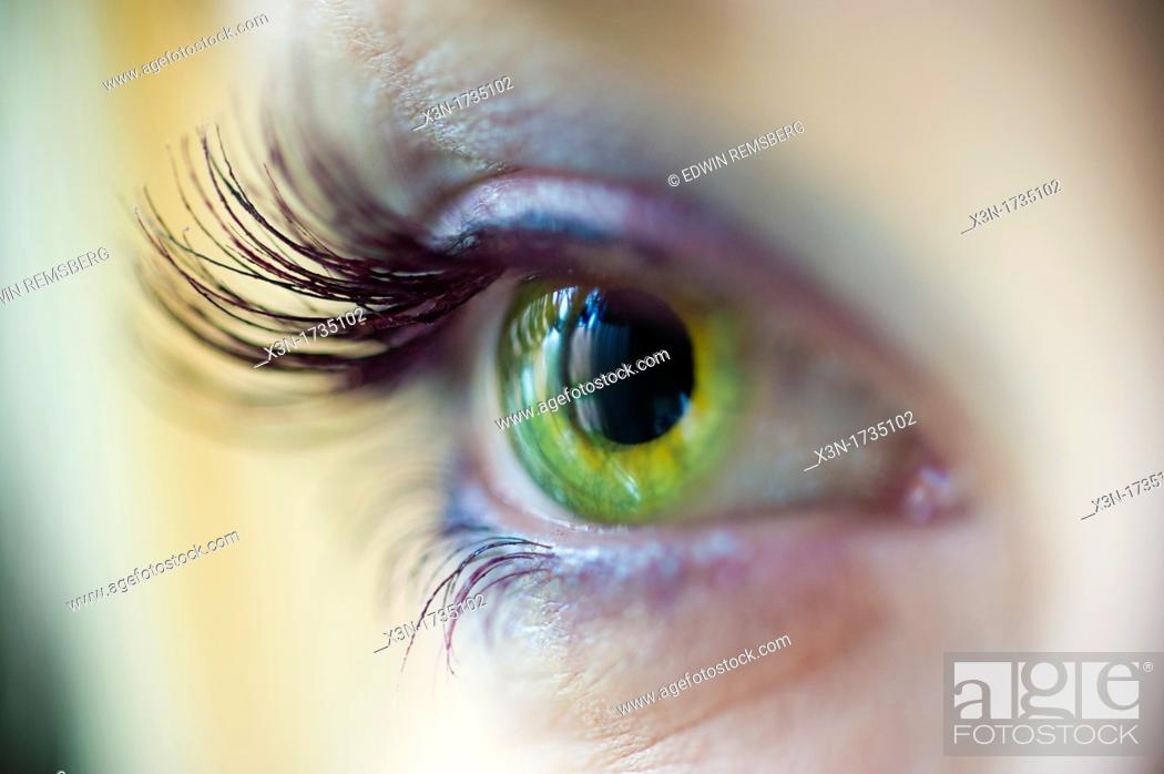 Stock Photo: Green eye with long lashes.