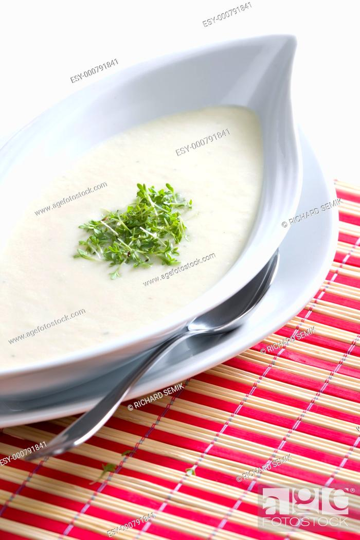 Stock Photo: thick celery soup.