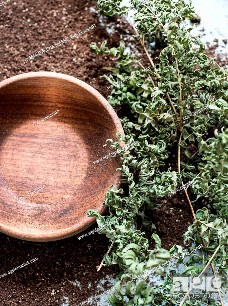 Stock Photo: Composition of wooden bowl, earth and dry ferns.