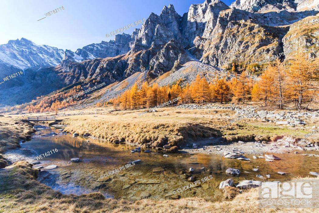 Stock Photo: The rio Buscagna at the entrance of Val Buscagna, Alpe Devero, Antigorio valley, Piedmont, Italy.