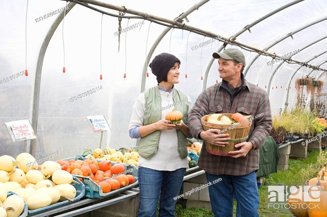 Stock Photo: Farmers in greenhouse with pumpkins.