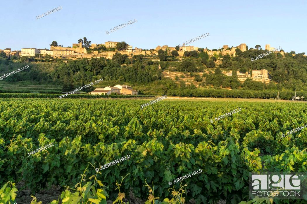 Stock Photo: France, Alpes-de-Haute-Provence, Luberon, vineyard near Menerbes, labelled Les Plus Beaux Villages de France, The Most Beautiful Villages of France, France.