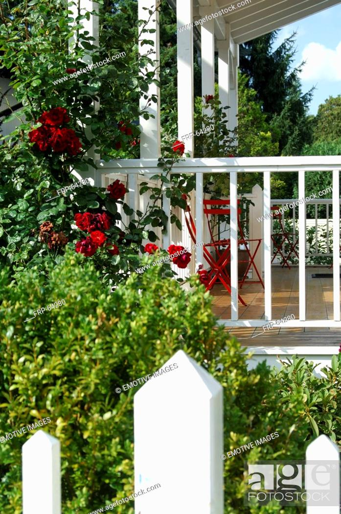 Stock Photo: Veranda with colourful flowers.