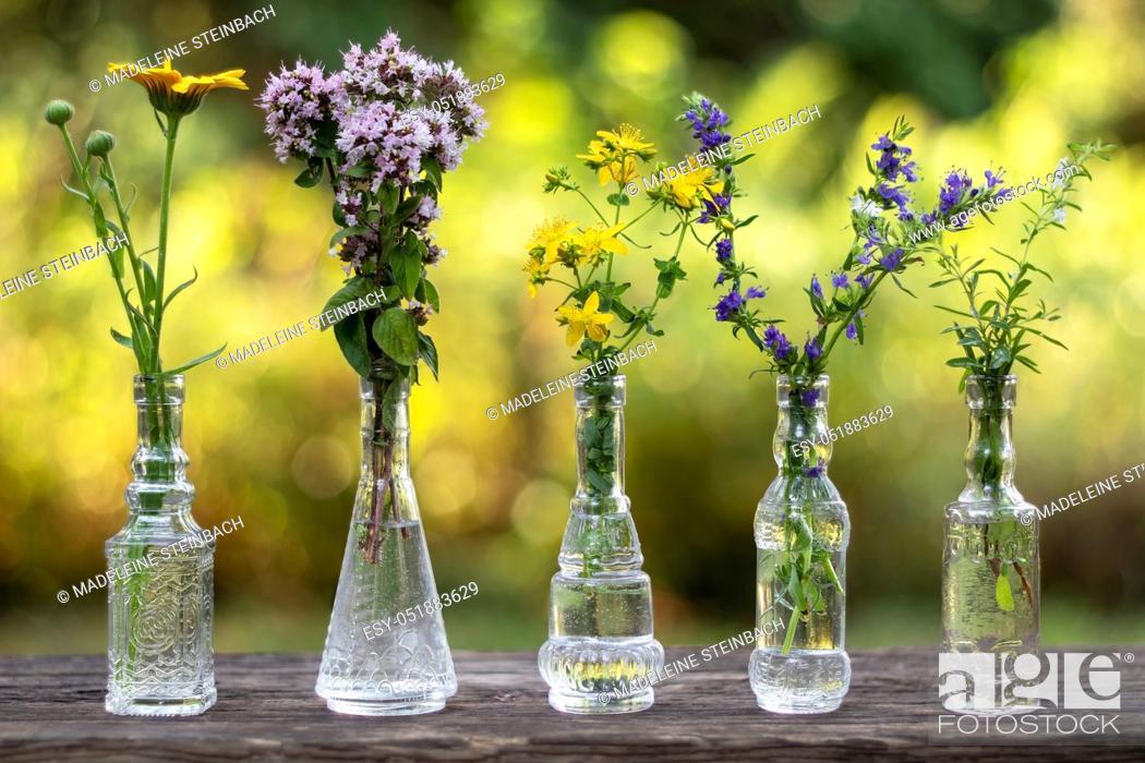 Stock Photo: Calendula, oregano, St John's wort, hyssop and mountain savory in glass bottles, outdoors.
