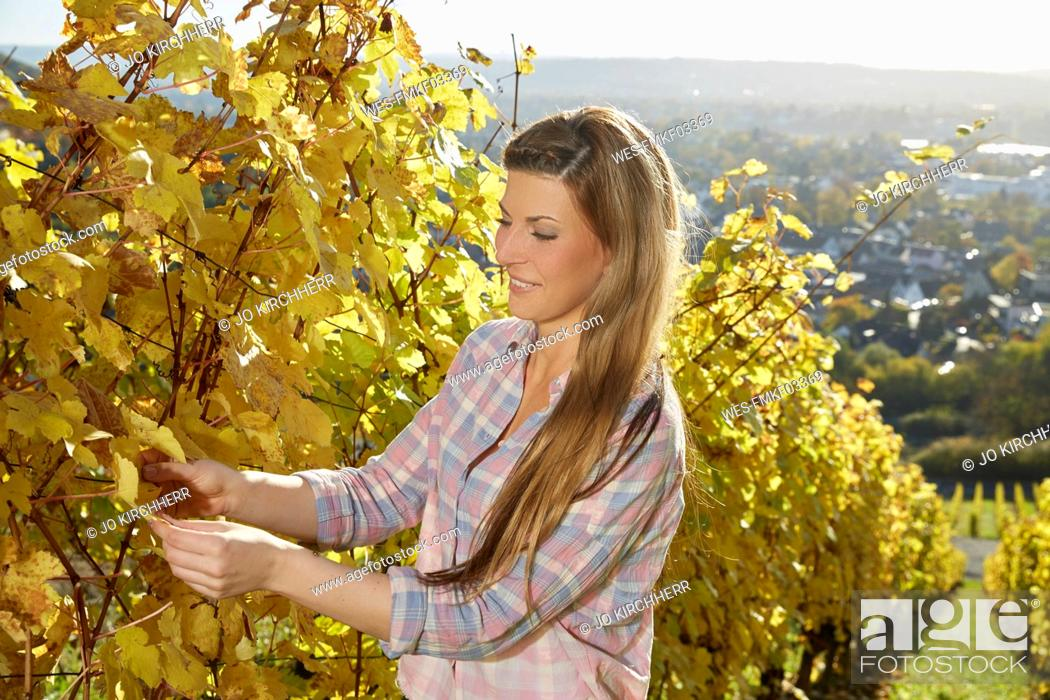 Stock Photo: Smiling young woman in a vineyard.