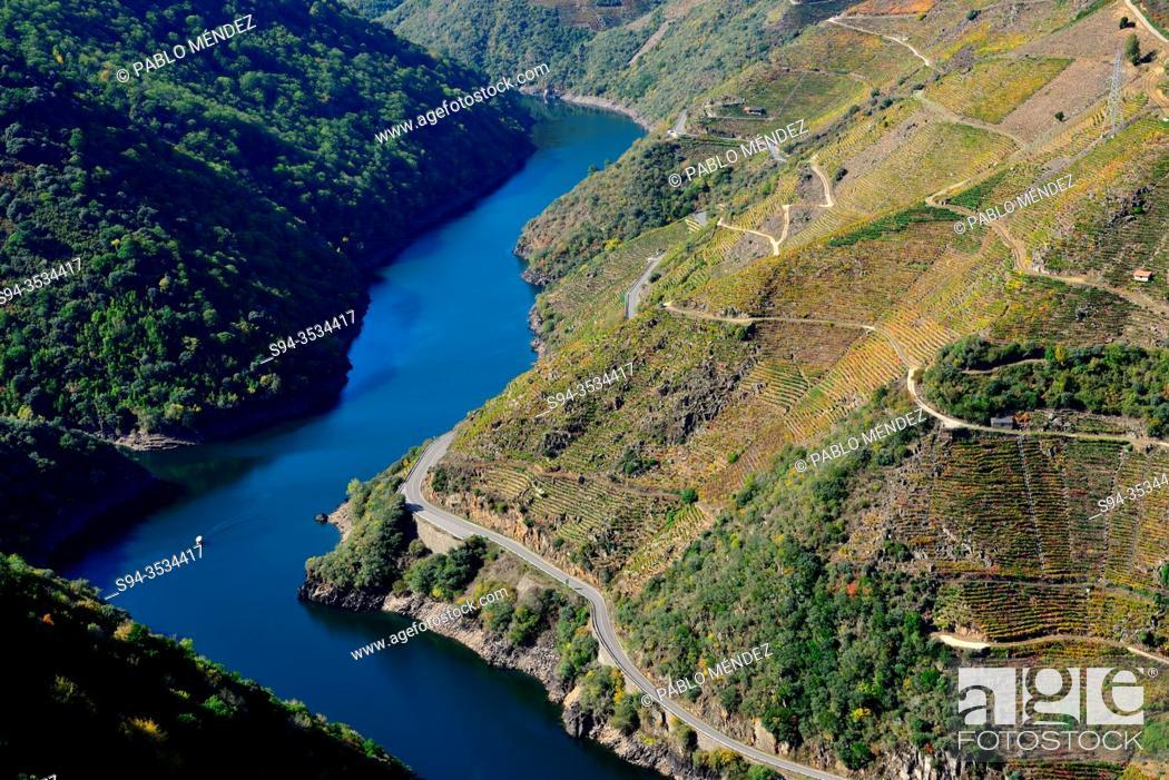 Stock Photo: Miradoiro de Matacas. Canyon of the Sil river. View of Sil river, Ribeira Sacra, Matacas, Paradela, Orense, Spain.