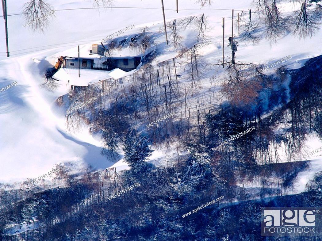 Stock Photo: house, nature, tree, snow, scenery, scene, winter.