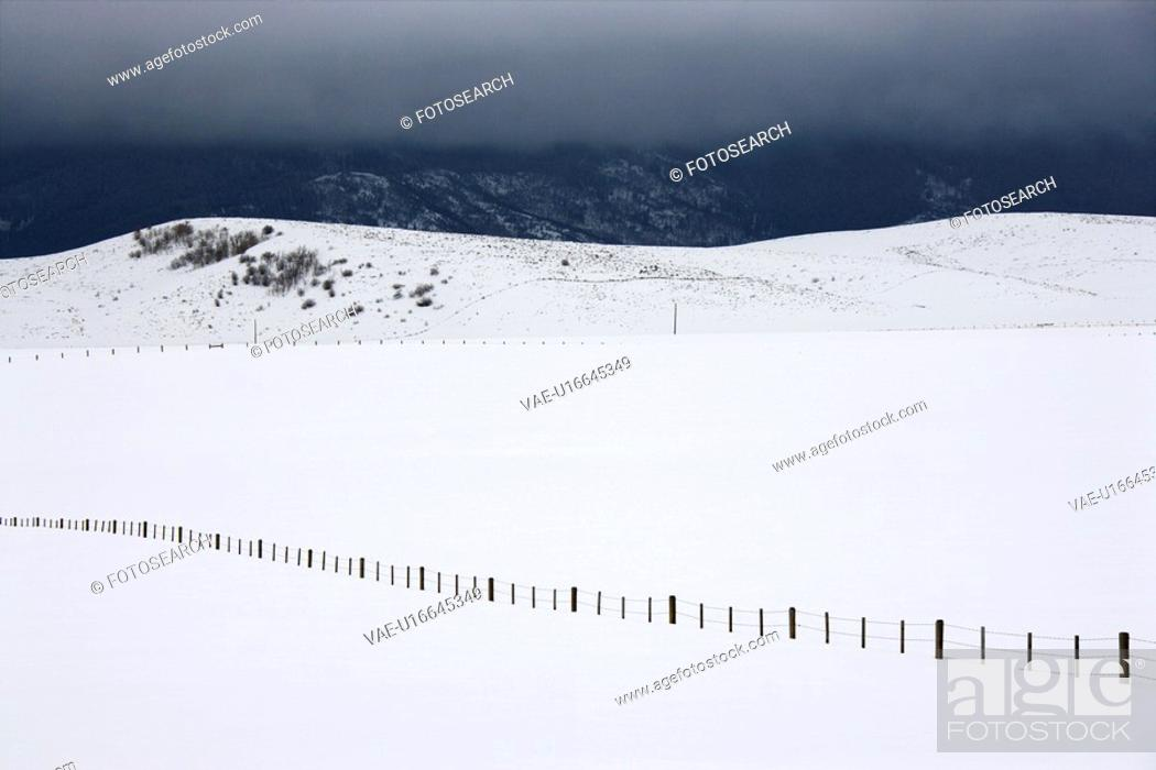 Stock Photo: Snow covered field with barbed wire fence in rural mountainous Colorado.