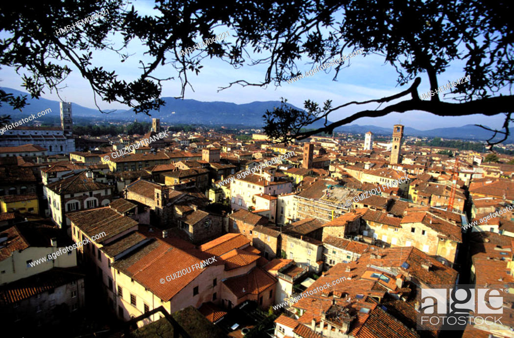 Stock Photo: Italy, Tuscany, the city of Lucca, panoramic view from the Guinigi tower.