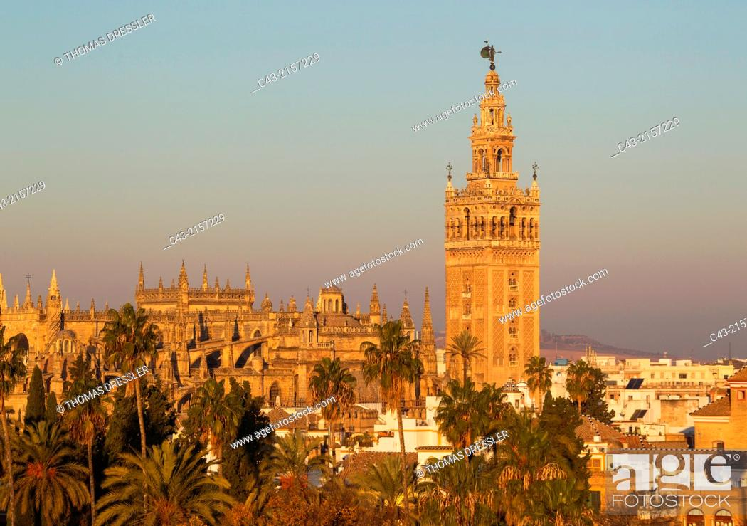 Imagen: The Moorish Giralda (1184-96) next to the Gothic Cathedral (1402-1506). Seville, Seville province, Andalusia, Spain.