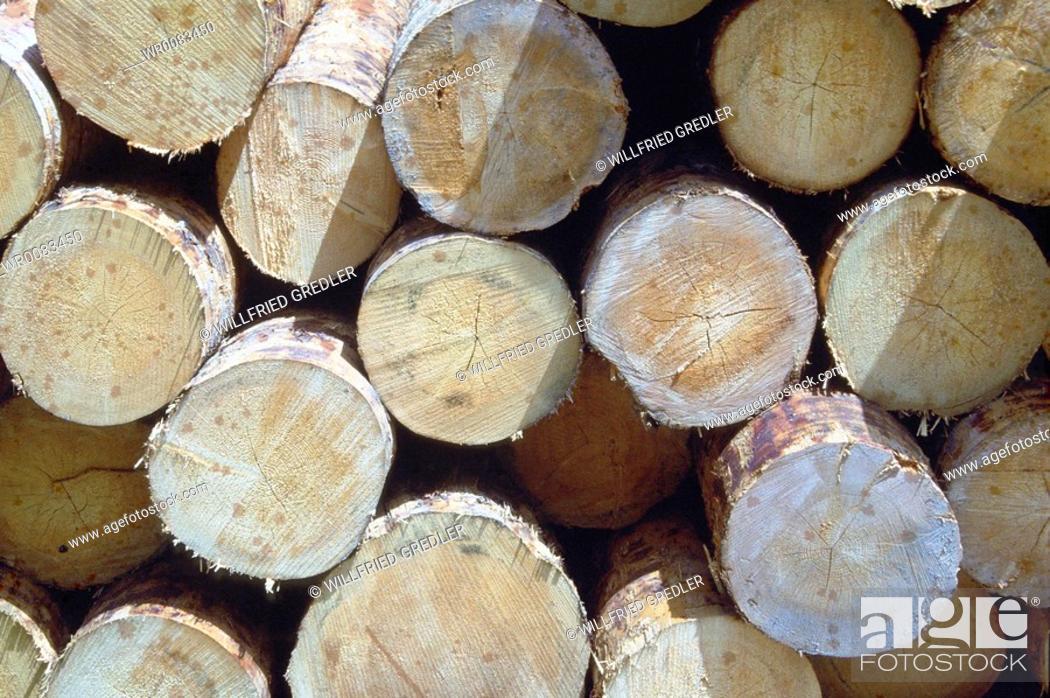 Stock Photo: Wood logs piled.